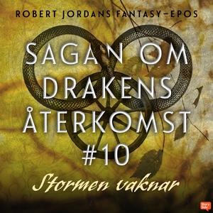 Stormen vaknar (ljudbok) av Robert Jordan