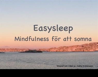 Lätt att sova (ljudbok) av Cathy Kristersson