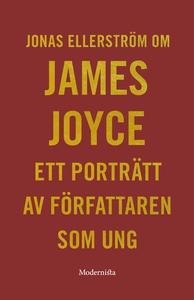 Om Ett porträtt av författaren som ung av James