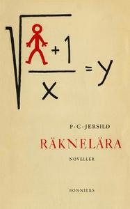 Räknelära : Noveller (e-bok) av P. C. Jersild