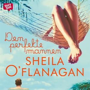 Den perfekte mannen (ljudbok) av Sheila O'Flana