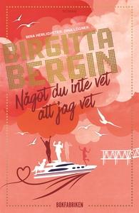 Något du inte vet att jag vet (e-bok) av Birgit