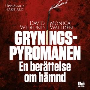 Gryningspyromanen : en berättelse om hämnd (lju