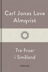 Tre fruar i Småland (e-bok) av Carl Jonas Love