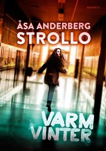 Varm vinter (e-bok) av Åsa Anderberg Strollo