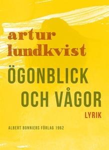 Ögonblick och vågor : Dikter (e-bok) av Artur L
