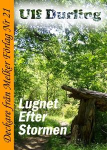 Lugnet efter stormen (e-bok) av Ulf Durling