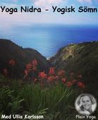 Yoga Nidra-Yogisk Sömn