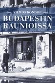 Budapestin raunioissa