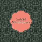 En enkel bok : mindfulness