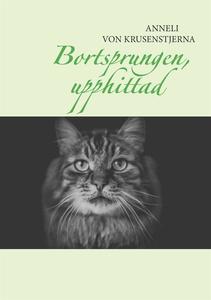 Bortsprungen, upphittad (e-bok) av Anneli von K