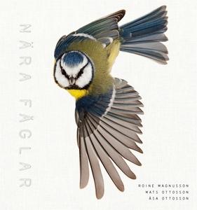 Nära fåglar (e-bok) av Åsa Ottosson, Mats och Å