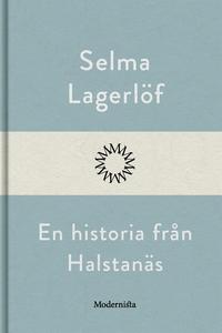 En historia från Halstanäs (e-bok) av Selma Lag