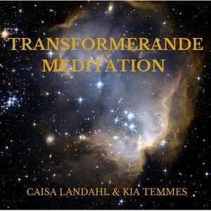 Transformerande meditation (ljudbok) av Kia Tem