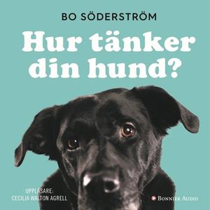 Hur tänker din hund? (ljudbok) av Bo Söderström