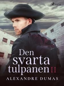 Den svarta tulpanen II (e-bok) av Alexandre Dum