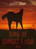 King of Sunset I USA