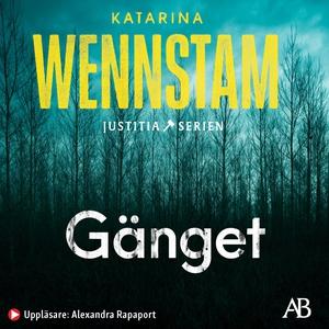 Gänget (ljudbok) av Katarina Wennstam