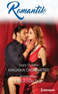 Magiska ökennätter/Falla för dig (e-bok) av Dan
