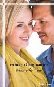 En natt, två hemligheter (e-bok) av Annie O'Nei
