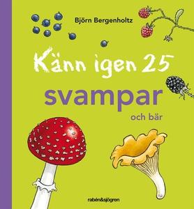Känn igen 25 svampar och bär (e-bok) av Björn B