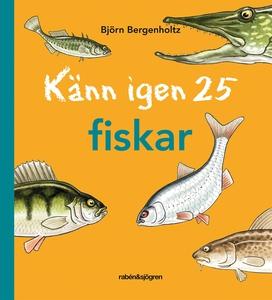 Känn igen 25 fiskar (e-bok) av Björn Bergenholt