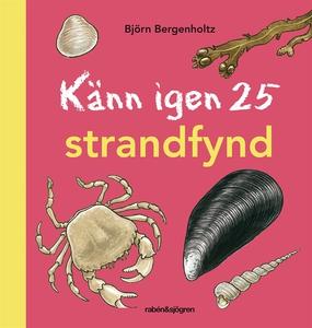Känn igen 25 strandfynd (e-bok) av Björn Bergen