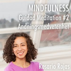 Mindfulness - Guidad Meditation #2 Andningsmedv
