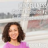 Mindfulness - Guidad Meditation #2 Andningsmedvetenhet