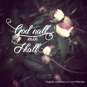 Godnatt min skatt (ljudbok) av Lina Molander