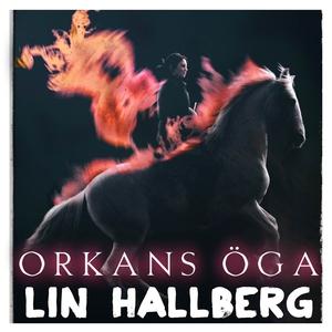 Orkans öga (ljudbok) av Lin Hallberg