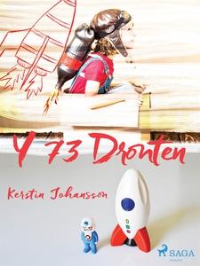 Y 73 Dronten (e-bok) av Kerstin Johansson