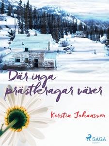 Där inga prästkragar växer (e-bok) av Kerstin J