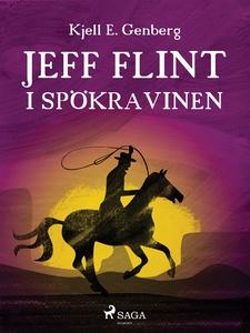 Jeff Flint i spökravinen (e-bok) av Kjell E. Ge
