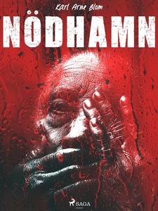 Nödhamn (e-bok) av Karl Arne Blom