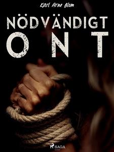 Nödvändigt ont (e-bok) av Karl Arne Blom