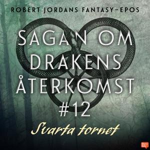 Svarta tornet (ljudbok) av Robert Jordan