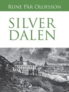 Silverdalen (e-bok) av Rune Pär Olofsson