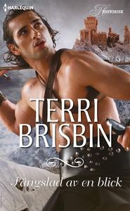 Fängslad av en blick (e-bok) av Terri Brisbin