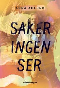 Saker ingen ser (e-bok) av Anna Ahlund