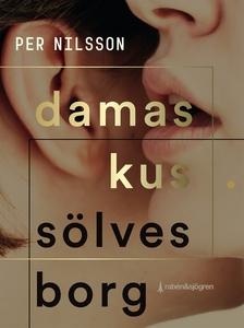 Damaskus. Sölvesborg (e-bok) av Per Nilsson