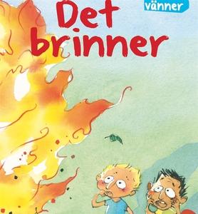 Det brinner (ljudbok) av Sanne Haugaard, Pia Aa