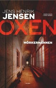 Mörkermännen (e-bok) av Jens Henrik Jensen