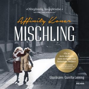 Mischling (ljudbok) av Affintiy Konar