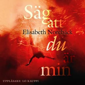 Säg att du är min (ljudbok) av Elisabeth Norebä