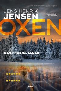 Den frusna elden (e-bok) av Jens Henrik Jensen