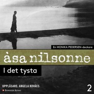 I det tysta (ljudbok) av Åsa Nilsonne