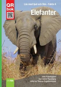 Elefanter - Fakta A (e-bok) av John Præstegaard
