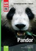 Pandor - Fakta B