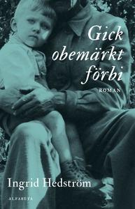 Gick obemärkt förbi (e-bok) av Ingrid Hedström